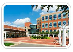 St. Francis Medical Center, Tuckahoe Orthopaedics, Ortho, Orthopedics